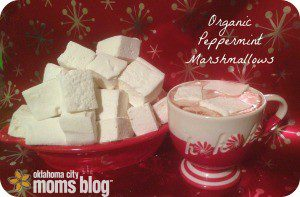 There is no better pairing for marshmallows than Hot Chocolate, especially these lusciously, creamy marshmallows!