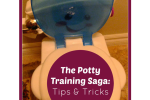 The Potty Training Saga