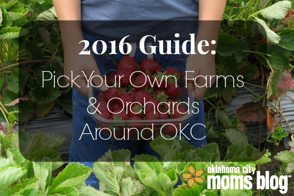 pick your own 2016