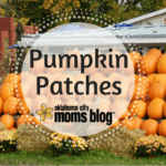 Guide to OKC Pumpkin Patches