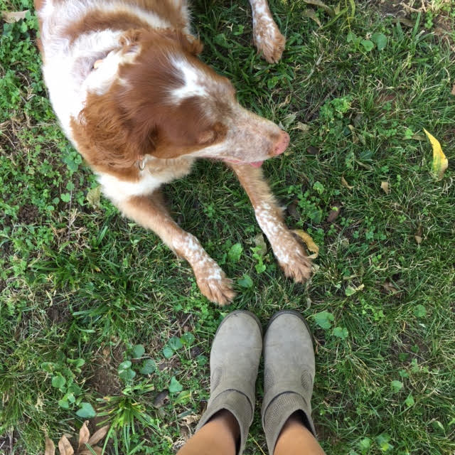 """Claiming and cultivating my """"own"""" green grass."""