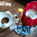 Ode to the Potty Training Mom
