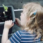Building A {Kid-Friendly} Fall Vegetable Garden
