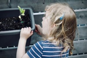 girl vegetable gardening