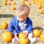 Must-Have Fall Experiences at Orr Family Farm