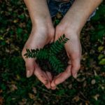 It's Easy Being Green (6 Easy Recycling Tips for Families)